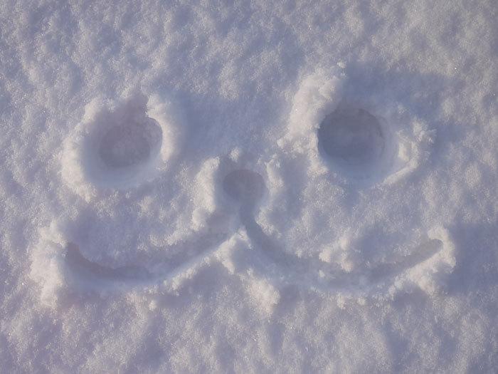 ペキニーズ Blog-白ペキニーズ シロ♂ & 白黒ペキニーズ クロ♀のフォトブログ-2012.12.10.北海道8