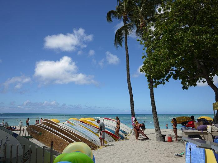 ペキニーズ Blog-白ペキニーズ シロ♂ & 白黒ペキニーズ クロ♀のフォトブログ-2013.6.2.Hawaii.3