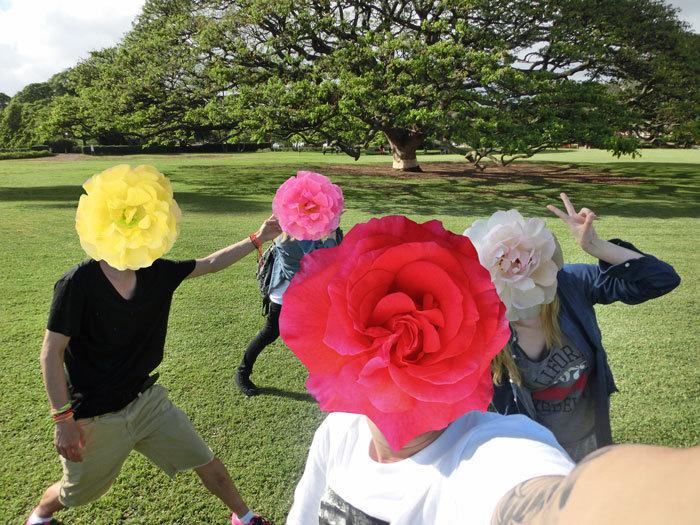 $ペキニーズ Blog-白ペキニーズ シロ♂ & 白黒ペキニーズ クロ♀のフォトブログ-2013.6.2.Hawaii