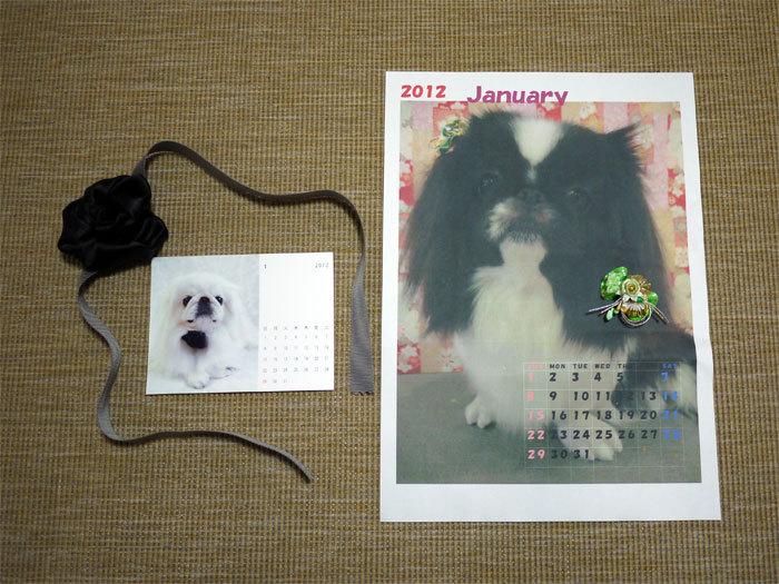 ペキニーズ Blog-白ペキニーズ シロ♂ & 白黒ペキニーズ クロ♀のフォトブログ-2011.12.31.シロクロ
