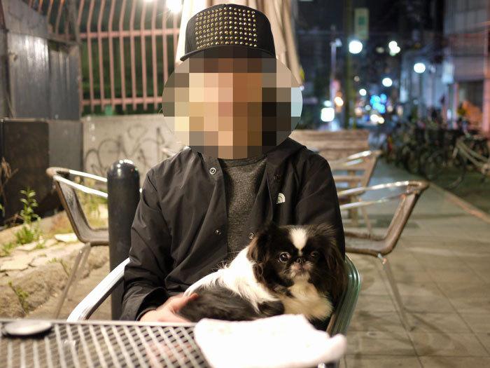 ペキニーズ Blog-白ペキニーズ シロ♂ & 白黒ペキニーズ クロ♀のフォトブログ-2011.12.10.クロ&父