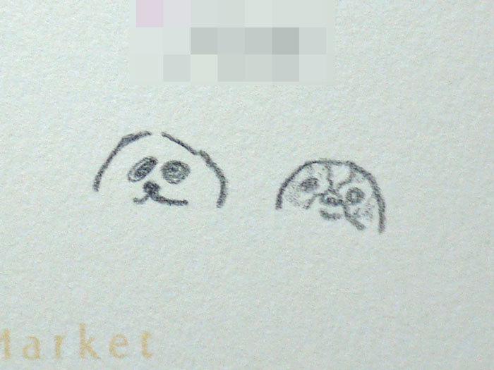 ペキニーズ Blog-白ペキニーズ シロ♂ & 白黒ペキニーズ クロ♀のフォトブログ-2012.1.25.カード