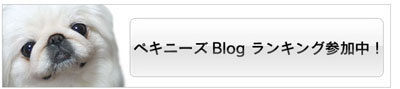 ペキクラブのブログ-ペキニーズブログランキング